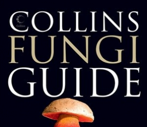 Collins guidebooks donation